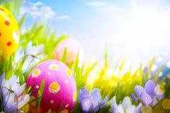 Bunte Ostereier und Blumen im Gras auf Blau Stockfoto