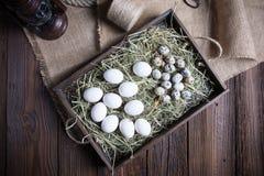 Bunte Ostereier und Tulpen auf wei?em rustikalem wdooen Tabelle lizenzfreie stockfotografie