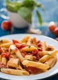 Bunte penne Teigwaren mit Tomaten Lizenzfreies Stockfoto
