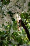 Bunte Perlen-Halsketten baumeln von blühendem Baum Lizenzfreie Stockbilder