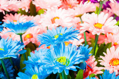 Bunte Plastikblumen Stockfotografie