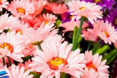 Bunte Plastikblumen Stockbilder
