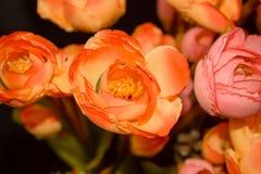 bunte Plastikblumen für decortion Hintergrund Lizenzfreie Stockbilder