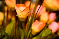 bunte Plastikblumen für decortion Hintergrund Stockfotos