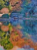 Bunte Reflexionen am japanischen Garten stauen mit kleiner Steinbrücke Stockbilder