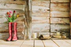 Bunte Regenstiefel mit Frühlingsblumen, -kerzen, -steinen und -buh Stockbilder