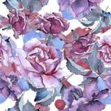 Bunte Rose Botanische mit Blumenblume Nahtloses Hintergrundmuster Stockbild