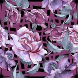 Bunte Rose Botanische mit Blumenblume Nahtloses Hintergrundmuster Stockfotografie
