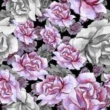 Bunte Rose Botanische mit Blumenblume Nahtloses Hintergrundmuster Stockbilder