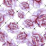 Bunte Rose Botanische mit Blumenblume Nahtloses Hintergrundmuster Lizenzfreies Stockfoto