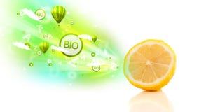 Bunte saftige Früchte mit grünen eco Zeichen und Ikonen Lizenzfreies Stockbild