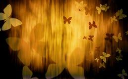 Bunte Schmetterlinge Lizenzfreies Stockfoto