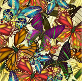 Bunte Schmetterlinge des nahtlosen Musters.  EPS10 Stockfotografie