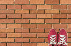Bunte Schuhe stellten auf Ziegelsteinhintergrund mit Kopienraum ein Beschneidungspfad eingeschlossen Stockbilder