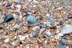 Bunte Seeoberteile auf Strand lizenzfreie stockbilder