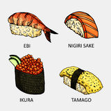 Bunte Skizze von verschiedenen Sushi Vector temaki, philadelfia, Kalifornien-, futomaki- und Sashimiikone Vektor Abbildung