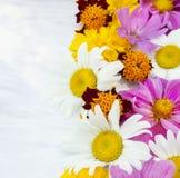 Bunte Sommerblumen auf weißer Tabelle Stockbilder