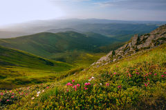 Bunte Sommerlandschaft in den Karpatenbergen Lizenzfreies Stockfoto