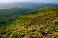 Bunte Sommerlandschaft in den Karpatenbergen Stockbilder