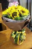 Bunte Sonnenblumen stockfotografie