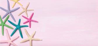 Bunte Starfish auf rosa hölzernem Hintergrund stockfotos