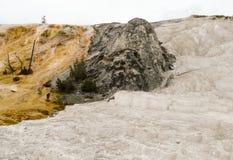 Bunte Terrassen der heißen Quellen in Yellowstone Nationalpark Stockbild