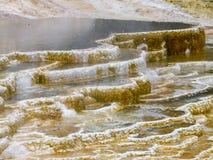Bunte Terrassen der heißen Quellen in Yellowstone Nationalpark Stockfotografie