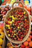 Bunte Tomaten stockbild