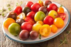 Bunte Tomaten in der Platte auf hölzernem Hintergrund Stockbild