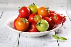 Bunte Tomaten mit Basilikum Stockbild