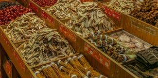 Bunte Trockenfrüchte, vegezables und Pilze an einem Nachtmarkt in Taipeh - 1 lizenzfreies stockbild