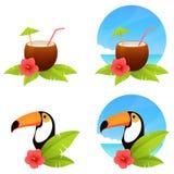 Bunte tropische Sommerillustrationen Lizenzfreies Stockbild