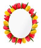 Bunte Tulpe blüht Hintergrund Glücklicher Muttertag stock abbildung