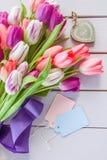 Bunte Tulpen auf Purpur Stockbild