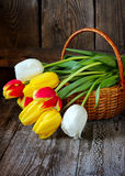 Bunte Tulpen in einem Korb auf einem hölzernen Hintergrund Stockbilder