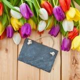 Bunte Tulpen im Frühjahr Stockbild