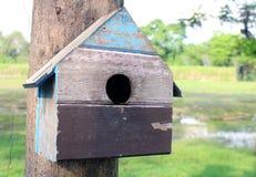 Bunte Vogel-Häuser im Park, der an einem Baum, altes Vogelhaus im Park, Vogelhaus mit natürlichem Grün hängt, verlässt Hintergrun Lizenzfreie Stockbilder