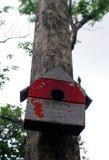 Bunte Vogel-Häuser im Park, der an einem Baum, altes Vogelhaus im Park, Vogelhaus mit natürlichem Grün hängt, verlässt Hintergrun Lizenzfreies Stockfoto