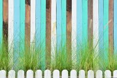 Bunte Wand der Weinlese mit schönem Gras Stockfotografie
