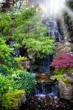 Bunte Wasserfälle im holländischen Garten ?Keukenhof? stockfotografie