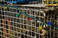 Bunte Weihnachtslichterkette, die alten benutzten Hummer tr verziert Lizenzfreie Stockfotos