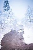 Bunte Winterlandschaft Lizenzfreie Stockfotos