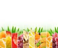 Bunte Zitrusfrüchte des Regenbogens streifen Sammlung auf dem weißen Ba Lizenzfreies Stockbild