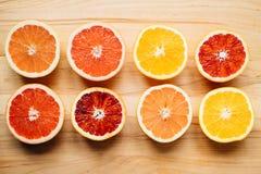 Bunte Zitrusfrucht Stockbilder