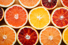 Bunte Zitrusfrucht Lizenzfreie Stockfotos