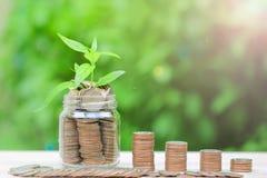 Bunten av myntpengar i glasflaska på grön bakgrund, sparande pengar för förbereder sig i framtid och investeringbegrepp arkivbild