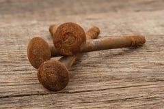 Bunten spikar skruvar med rost på träbräde arkivbilder