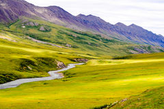Bunter alaskischer Strom und Tal Stockfotografie