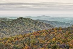 Bunter Autumn Foliage in Rolling Hills von Virginia Lizenzfreie Stockbilder