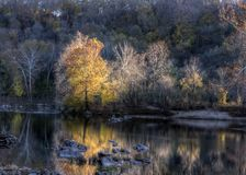 Bunter Autumn Foliage By Water Lizenzfreie Stockfotografie